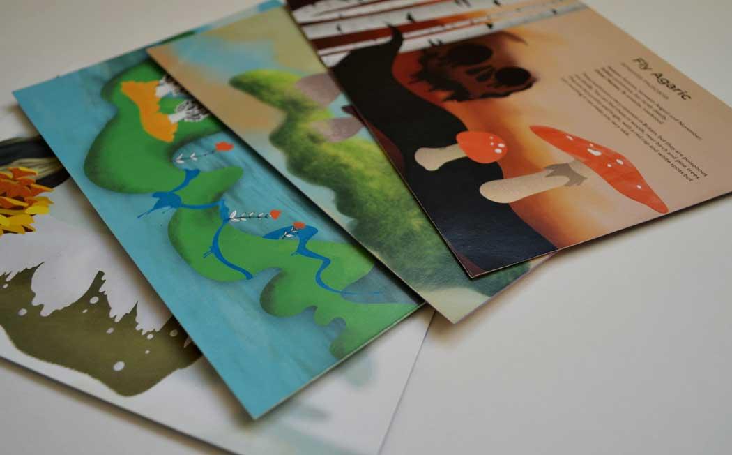 illustration-cards-1